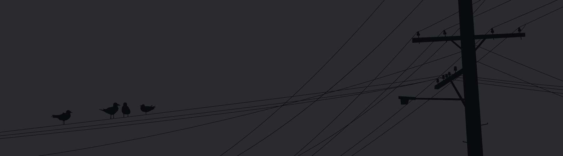 birds-wire